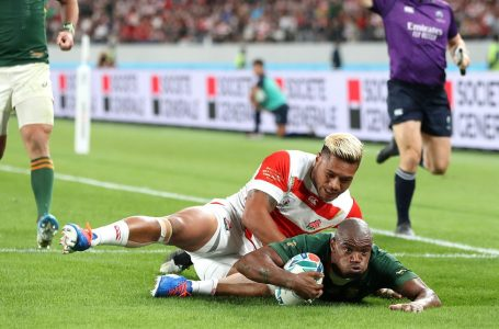 Springboks 'push the right buttons' to end Japan's party