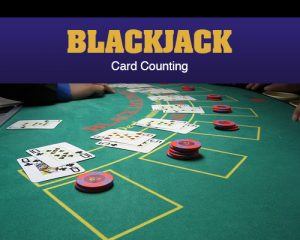 Blackjack Card Counting 101