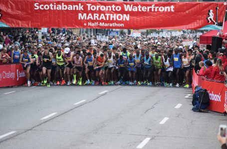 Toronto Waterfront Marathon latest race cancelled due to coronavirus